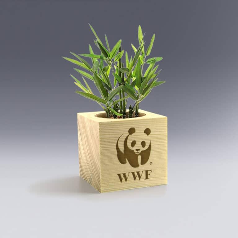 Cadeau d'entreprise Ecocube déco à personnaliser