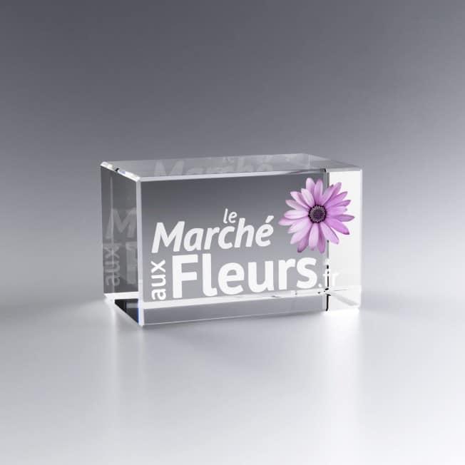 Trophée bloc verre gravé 3d marquage couleur