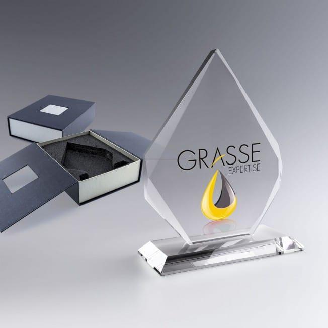 Trophée personnalisé Iceberg, trophée en verre, trophée à graver sur socle