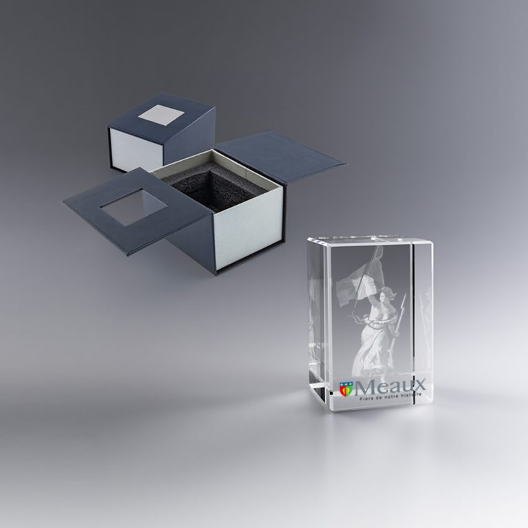 Personnalisé par Zephyr Pro grâce à la technique de modélisation laser 3D