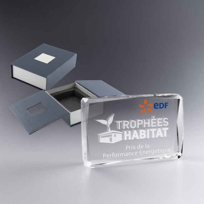 Bloc de verre gravé, trophée logo
