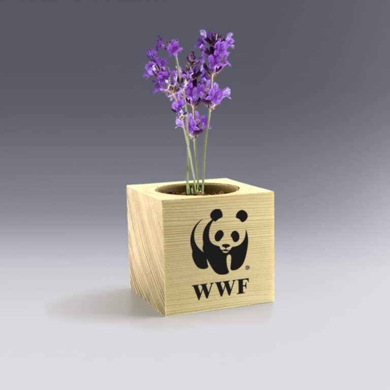 Cadeau d'entreprise Ecocube fleur à personnaliser